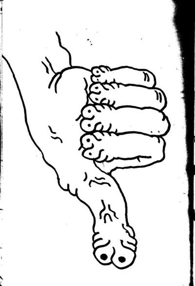 Dedo grande